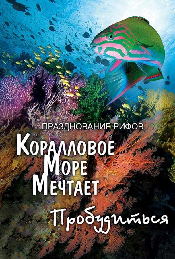 Грёзы Кораллового моря: Пробуждение / Coral Sea Dreaming: Awaken (2009)