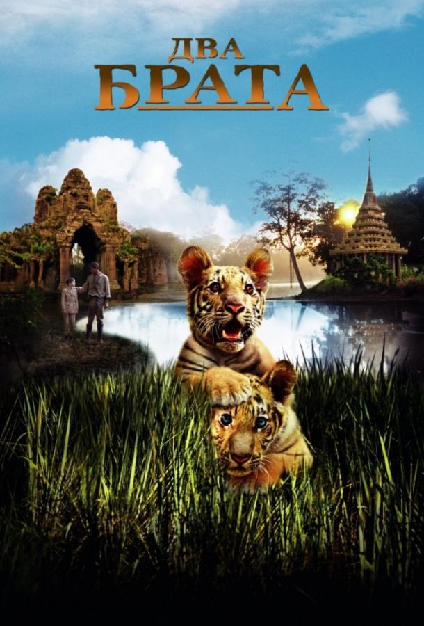Два брата фильм (2004)