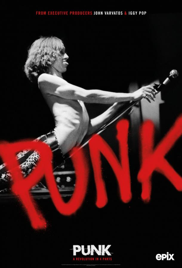 Панк / Punk (2019)
