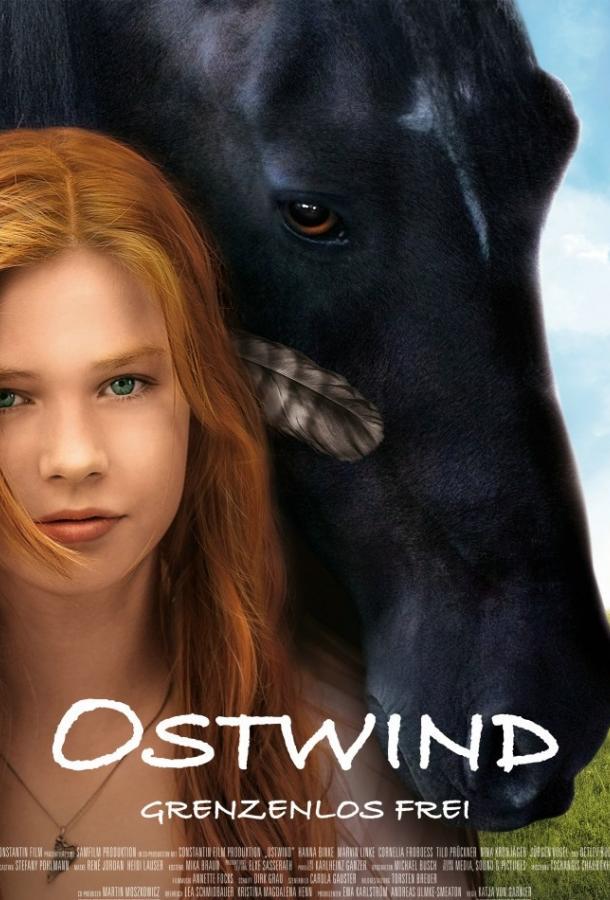 Оствинд / Восточный ветер (2013) смотреть онлайн