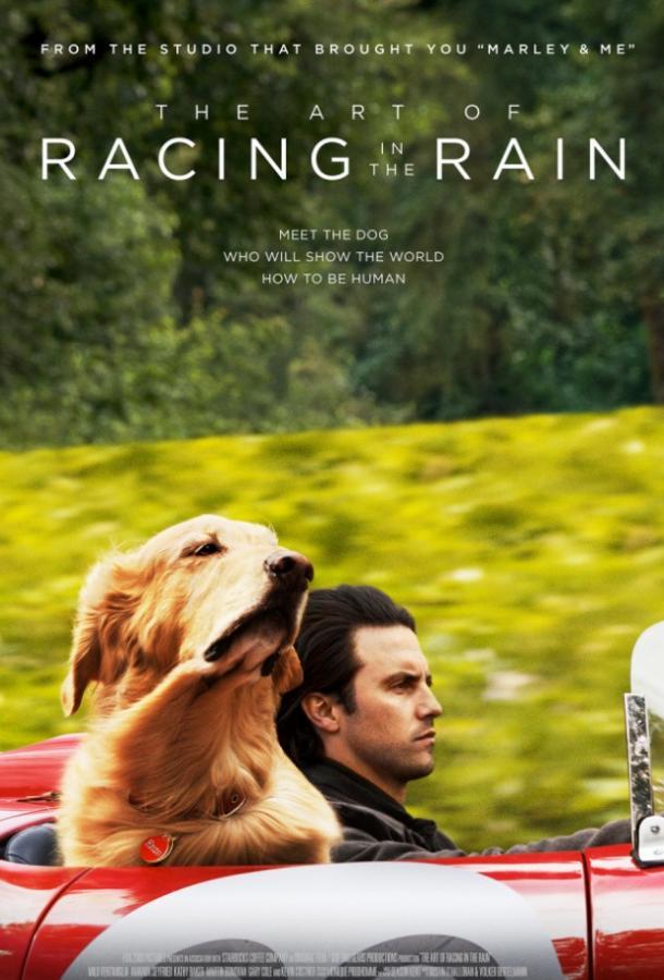Невероятный мир глазами Энцо / The Art of Racing in the Rain (2019)